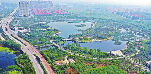 创建国家森林城市专题研究